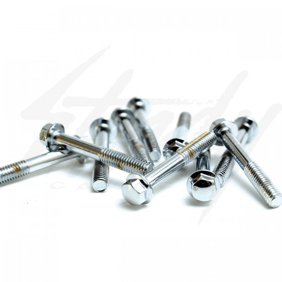 Chrome M6x1.0mmx40mm Hex Bolts Set