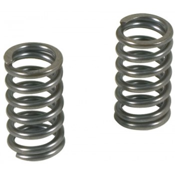 TPR Heavy Duty Valve Springs for Kawasaki Z125 Pro